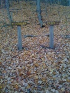 Which way do you think I went?  Both! It's a short trail and I had the time.