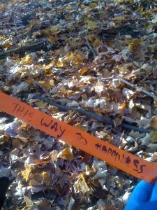 Random ribbon tied to a tree.